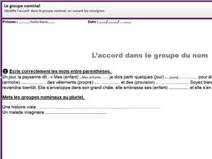 Les Accords Du Groupe Nominal Ce1 Blog Wizzbe